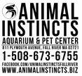 Animal Instincts Logo