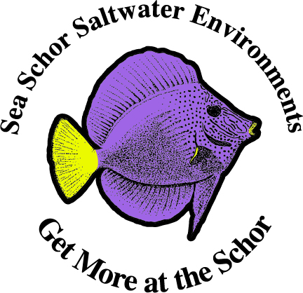 Sea Schor Logo
