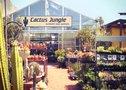 Cactus Jungle - Berkeley Logo
