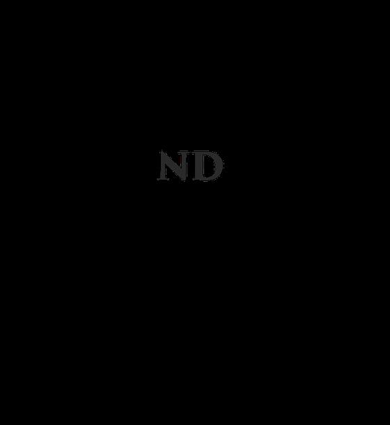 Nutrition Depot - Rice Village Logo