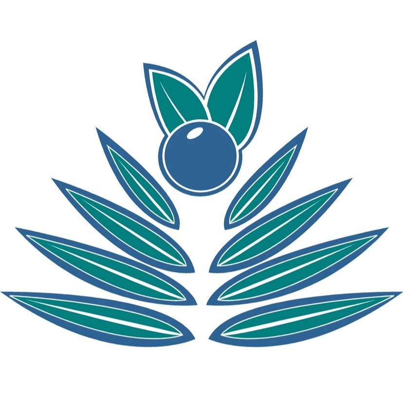 Palm Berries - Denver Logo
