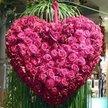 Every Loving Bloom Florist Logo