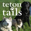 Teton Tails - Jackson Logo