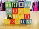 They Grow Like Weeds Logo
