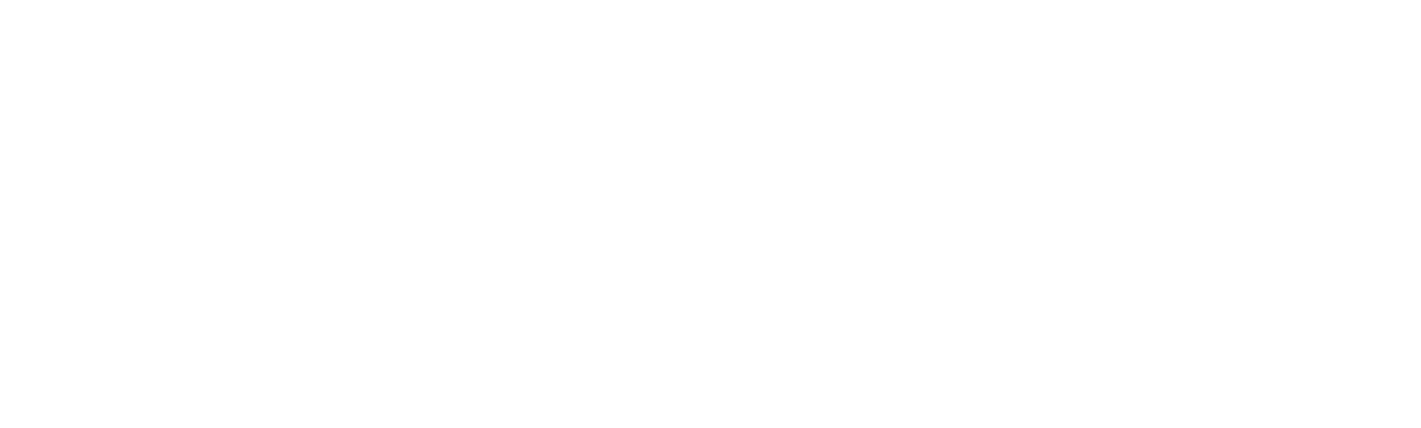 Quantum Leap Trampoline Logo